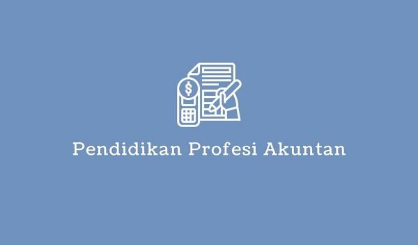 pendidikan profesi akuntan