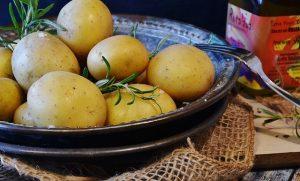 kandungan gizi dan manfaat kentang